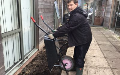 Students getting 'green fingered' in Functional Skills
