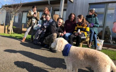 Trainee therapy dogs join Fairfield Farm College