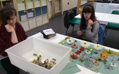 Foundation students at Fairfield Farm College prepare their Enterprise project
